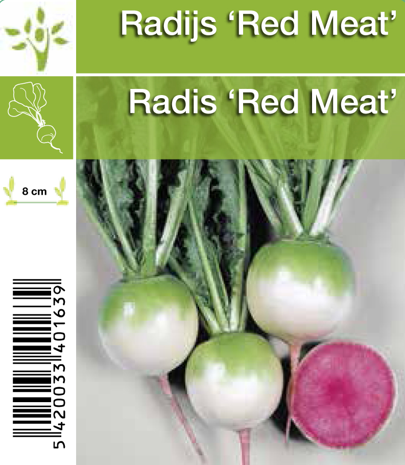 Radis 'Red Meat'